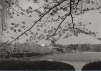 190331_005