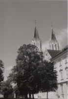 190501_011_1