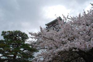30j03_tsurugajou_640
