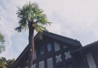 191005_07