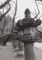 19_200122_ueno