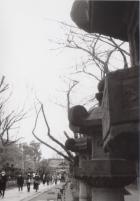 20_200122_ueno