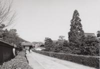 30_200211_kioto