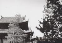 32_200211_kioto