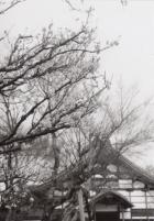 38_200212_kioto