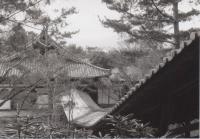 44_200212_kioto